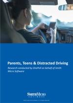 drive-survey-ebook-cover